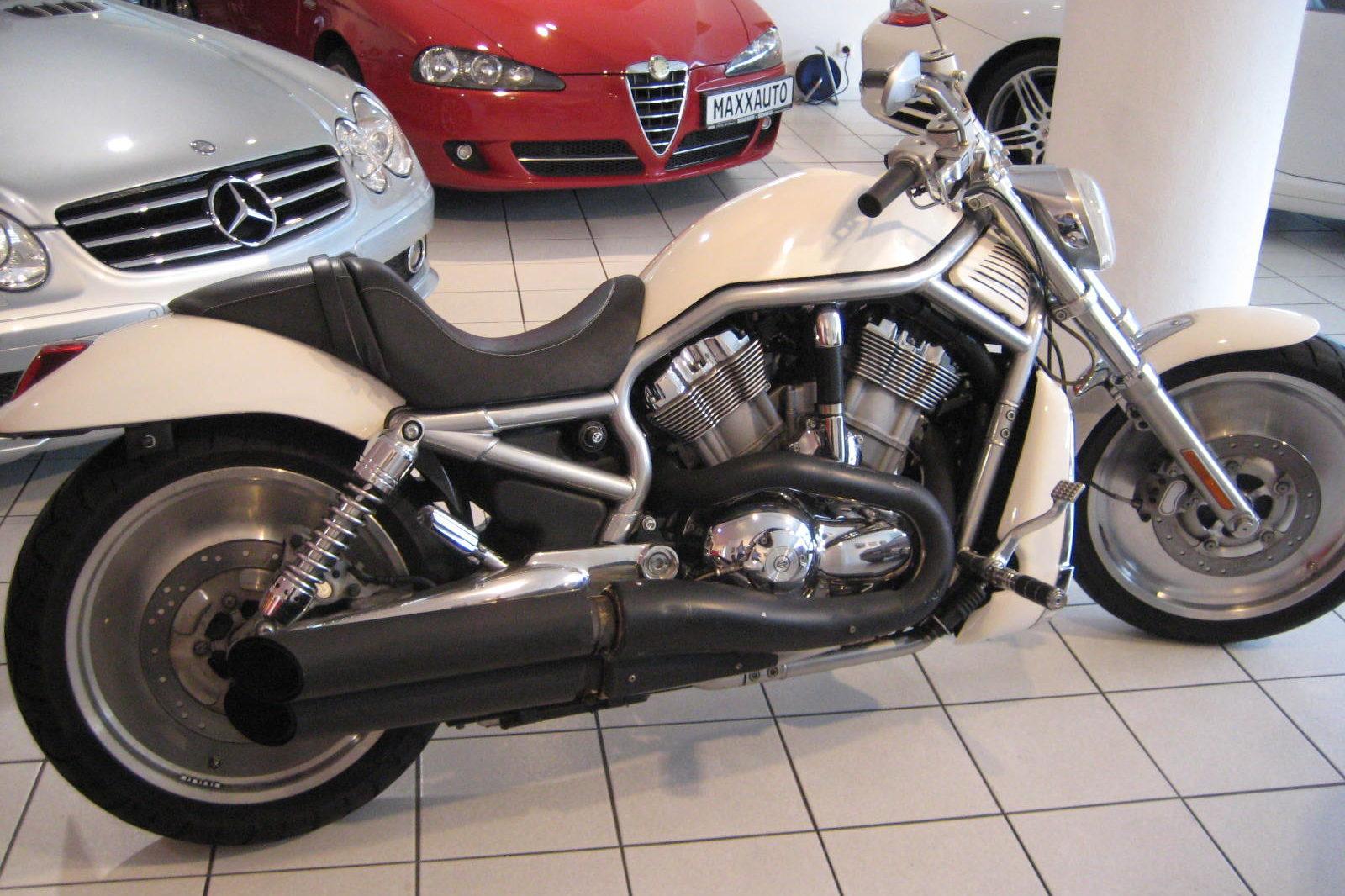 Harley Davidson V rod weiss